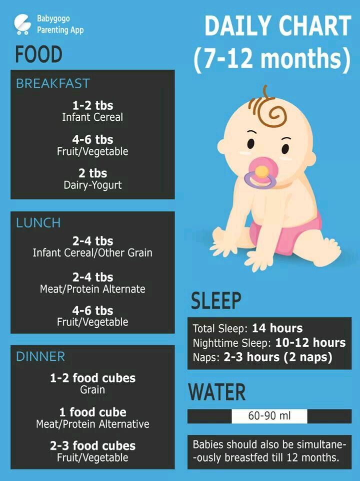 Can Anybody Share Food Chart For 9 To 10 Month Old Baby