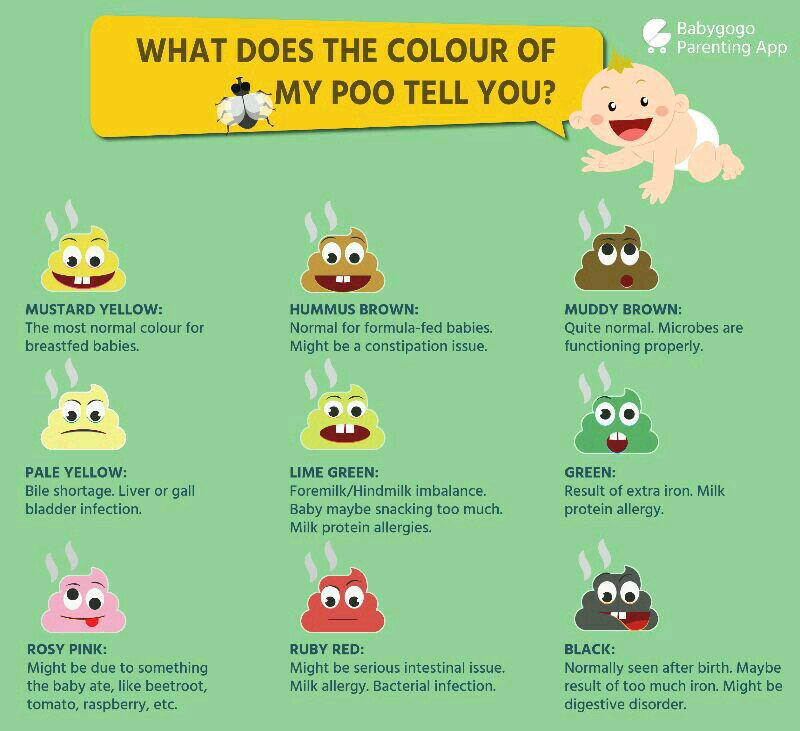Is Loose Stool Normal 16 Ways To Achieve A Healthy Poop