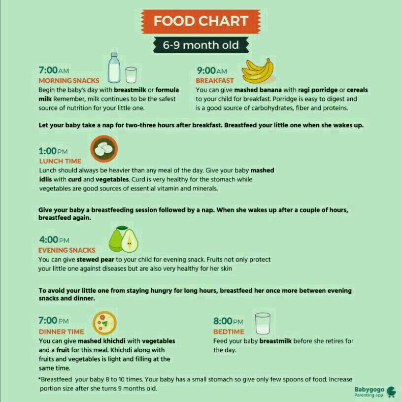 8month Baby Healthy N Weight Gaining Food Chart Plz