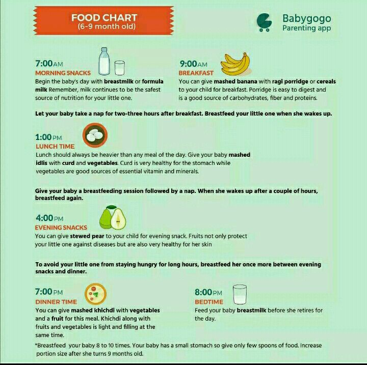 Can U Share The Baby Food Routine For 7 Month Old Baby