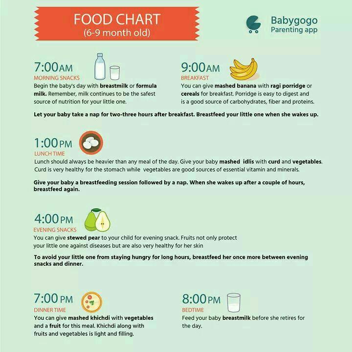 Plz Share 6 Month Old Babys Diet Chart