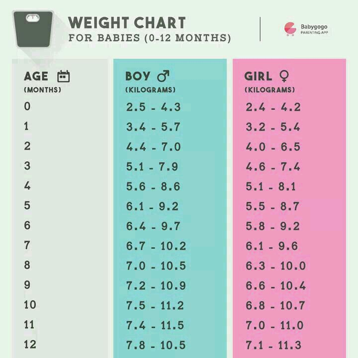 What Is Average Weight Of 4 Month Old Baby