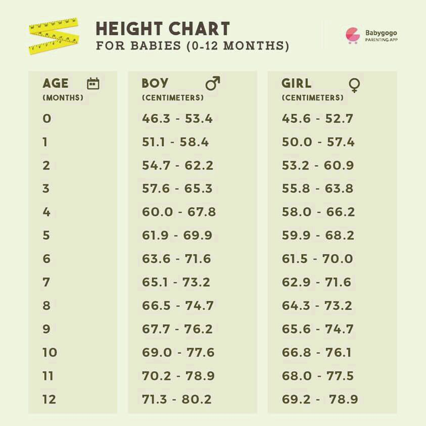 Hello Can Anyone Give Weight And Height Chart