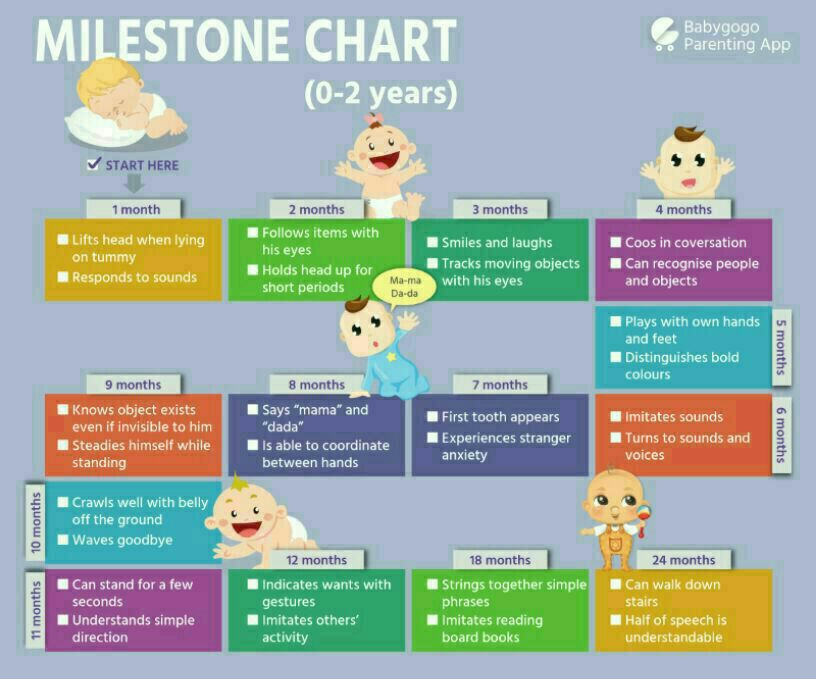 4 Months Baby Food Chart