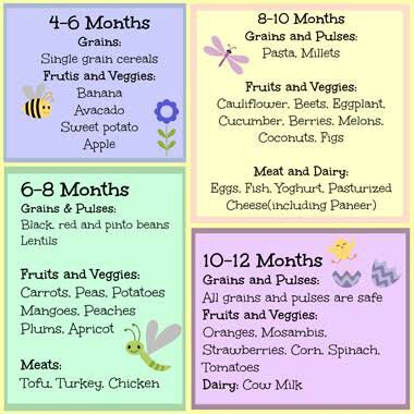 94 food recipes for 8 month old baby 6 lunch recipes for 8 months where can i see the list of food and recipe for 6 months old baby forumfinder Choice Image