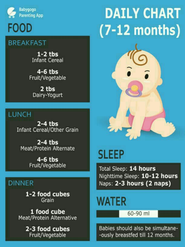 Month Baby Food Intake