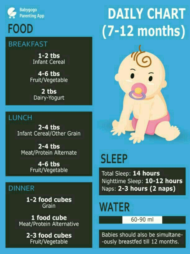 My Little Baby Girl 10 Month Old So Please Give Baby Food Chart