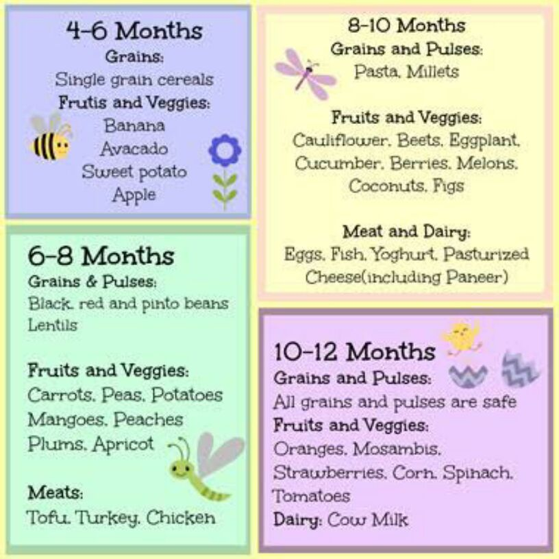 The best baby food and recipes please for a 10 month old forumfinder Gallery