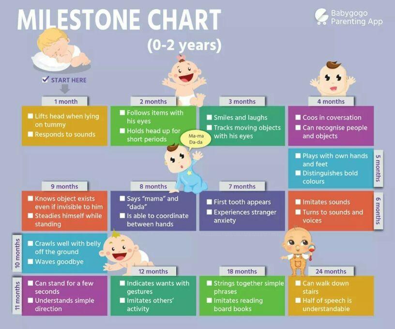 babies growth chart