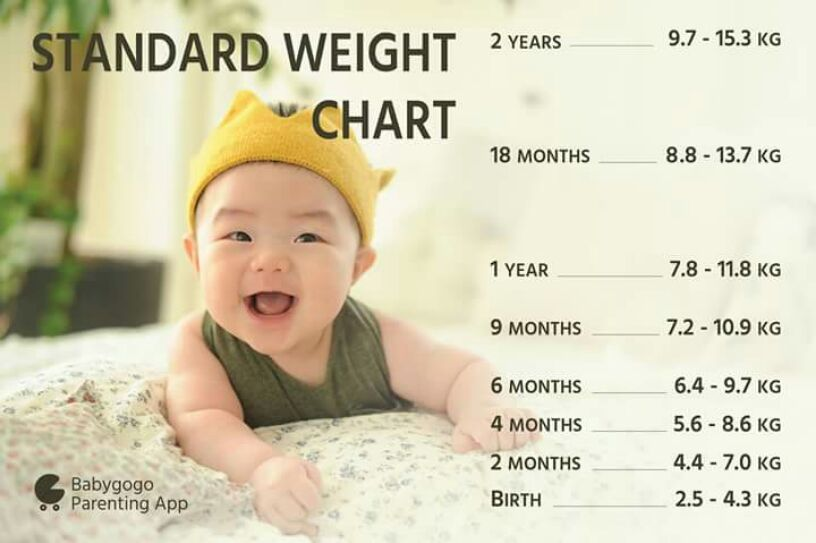Baby Ideal Weight Of 13 Months Old Baby