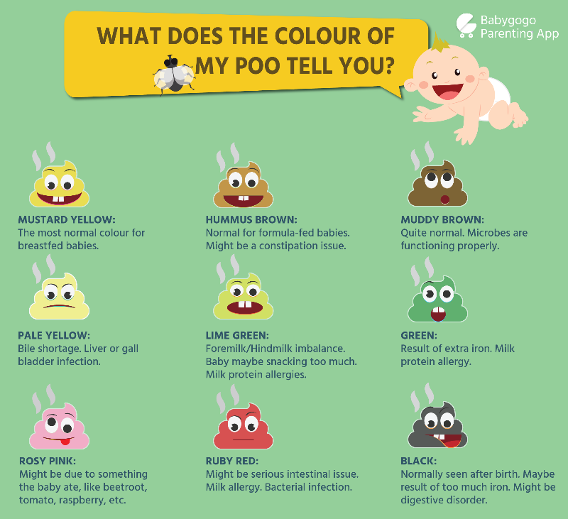 What Does It Mean When Your Stool Comes Out Green: A Guide To Baby Poop Type To Help Understand Your Baby