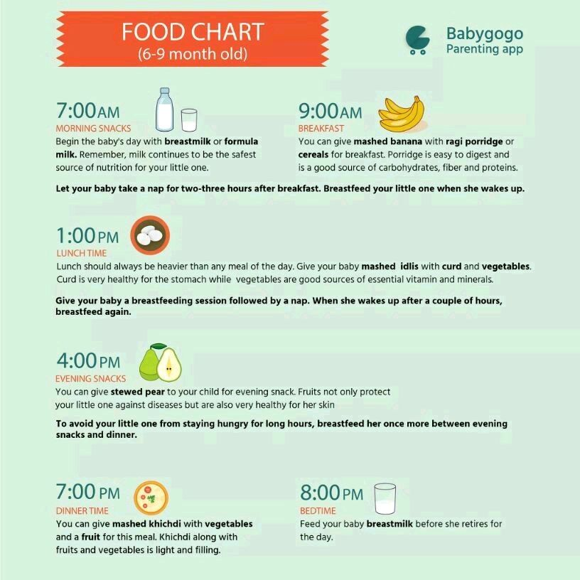 diet for an 8 month old baby